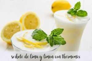 Limetten- und Zitronensorbet mit dem Thermomix