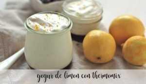 Zitronenjoghurt mit Thermomix