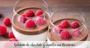 Schokoladen-Vanille-Gelee mit Thermomix